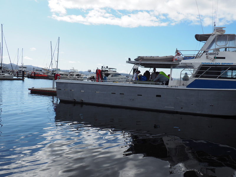 master-24-near-coastal-hobart-seafood-maritime-training-tasmania-1